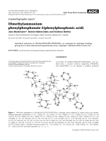 Crystallographic report  Dimethylammonium phenylphosphonate╖2(phenylphosphonic acid).