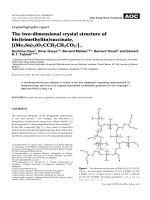 Crystallographic report  The two-dimensional crystal structure of bis(trimethyltin)succinate  [(Me3Sn)2(O2CCH2CH2CO2)].