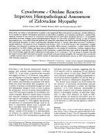 Cytochrome c oxidase reaction improves histopathological assessment of zidovudine myopathy.