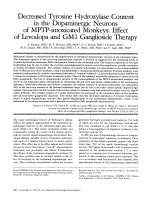 Decreased tyrosine hydroxylase content in the dopaminergic neurons of MPTPЦintoxicated monkeys  Effect of levodopa and GM1 ganglioside therapy.