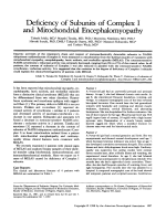 Deficiency of subunits of complex I and mitochondrial encephalomyopathy.