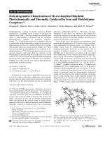Dehydrogenative Dimerization of Di-tert-butyltin Dihydride Photochemically and Thermally Catalyzed by Iron and Molybdenum Complexes.