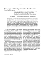 Demography and pathology of an urban slave population from New Orleans.