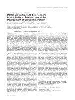 Dental crown size and sex hormone concentrations  Another look at the development of sexual dimorphism.