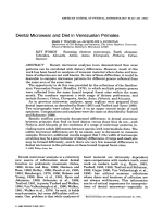 Dental microwear and diet in Venezuelan primates.