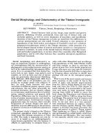 Dental morphology and odontometry of the Tibetan immigrants.