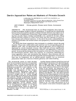 Dentin apposition rates as markers of primate growth.