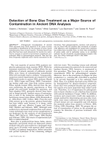 Detection of bone glue treatment as a major source of contamination in ancient DNA analyses.