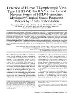 Detection of human T-lymphotropic virus type I (HTLV-I) tax RNA in the central nervous system of HTLV-IЦassociated myelopathytropical spastic paraparesis patients by in situ hybridization.