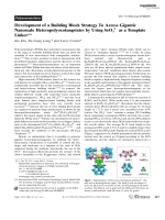 Development of a Building Block Strategy To Access Gigantic Nanoscale Heteropolyoxotungstates by Using SeO32 as a Template Linker.