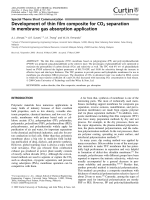 Development of thin film composite for CO2 separation in membrane gas absorption application.
