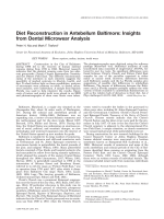 Diet reconstruction in antebellum Baltimore  Insights from dental microwear analysis.