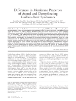 Differences in membrane properties of axonal and demyelinating Guillain-Barr syndromes.