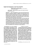 Digital dermatoglyphics of the Faroe Islanders.