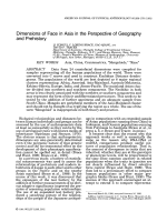 Dimensions of face in Asia in the perspective of geography and prehistory.