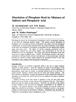 Dissolution of Phosphate Rock by Mixtures of Sulfuric and Phosphoric Acid.