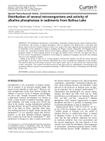 Distribution of several microorganisms and activity of alkaline phosphatase in sediments from Baihua Lake.