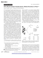 DNA-Based Catalytic Enantioselective Michael Reactions in Water.