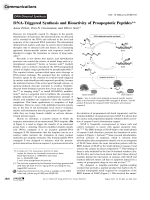 DNA-Triggered Synthesis and Bioactivity of Proapoptotic Peptides.