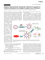 Drug-Free Macromolecular Therapeutics  Induction of Apoptosis by Coiled-Coil-Mediated Cross-Linking of Antigens on the Cell Surface.