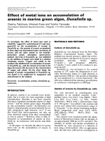 Effect of metal ions on accumulation of arsenic in marine green algae  Dunaliella sp.