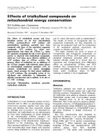 Effects of trialkyllead compounds on mitochondrial energy conservation.