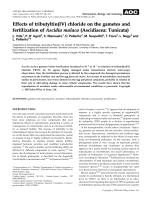 Effects of tributyltin(IV) chloride on the gametes and fertilization of Ascidia malaca (Ascidiacea  Tunicata).