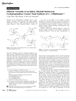 Efficient Assembly of an Indole Alkaloid Skeleton by Cyclopropanation  Concise Total Synthesis of (▒)-Minfiensine.