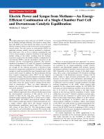 Electric Power and Syngas from MethaneЧAn Energy-Efficient Combination of a Single-Chamber Fuel Cell and Downstream Catalytic Equilibration.