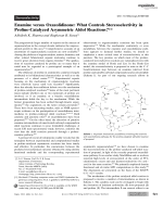 Enamine versus Oxazolidinone  What Controls Stereoselectivity in Proline-Catalyzed Asymmetric Aldol Reactions.