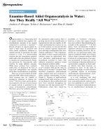 Enamine-Based Aldol Organocatalysis in Water  Are They Really УAll WetФ.