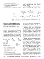 Enantioselective Synthesis of Methylfuranosides of Unnatural 3 6-Dideoxy-3-methylaldohexoses from Lactates by Homoaldol Reactions.