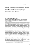 Energy Efficiency of an Integrated Process Based on Gasification for Hydrogen Production from Biomass.