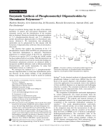 Enzymatic Synthesis of Phosphonomethyl Oligonucleotides by Therminator Polymerase.