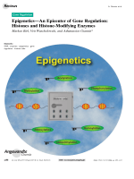 EpigeneticsЧAn Epicenter of Gene Regulation  Histones and Histone-Modifying Enzymes.