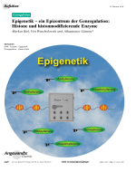 Epigenetik Ц ein Epizentrum der Genregulation  Histone und histonmodifizierende Enzyme.