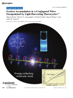 Exciton Accumulation in -Conjugated Wires Encapsulated by Light-Harvesting Macrocycles.