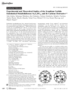 Experimental and Theoretical Studies of the Scandium Carbide Endohedral Metallofullerene Sc2C2@C82 and Its Carbene Derivative.