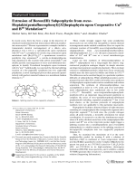 Extrusion of Boron(III) Subporphyrin from meso-Heptakis(pentafluorophenyl)[32]heptaphyrin upon Cooperative CuII and BIII Metalation.