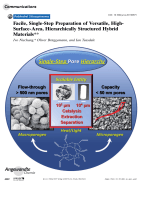 Facile  Single-Step Preparation of Versatile  High-Surface-Area  Hierarchically Structured Hybrid Materials.
