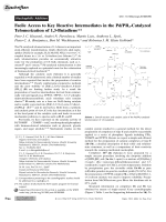 Facile Access to Key Reactive Intermediates in the PdPR3-Catalyzed Telomerization of 1 3-Butadiene.