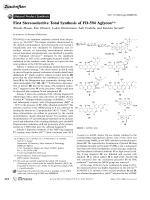 First Stereoselective Total Synthesis of FD-594 Aglycon.
