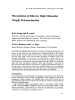Flocculation of silica by High Molecular Weight Polysaccharides.