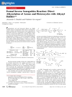 Formal Inverse Sonogashira Reaction  Direct Alkynylation of Arenes and Heterocycles with Alkynyl Halides.