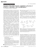 Formation of Potentially Prebiotic Amphiphiles by Reaction of -Hydroxy-n-alkylamines with Cyclotriphosphate.