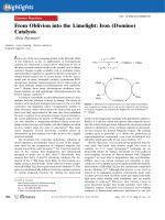 From Oblivion into the Limelight  Iron (Domino) Catalysis.