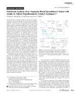 Functional Analysis of an Aspartate-Based Epoxidation Catalyst with Amide-to-Alkene Peptidomimetic Catalyst Analogues.