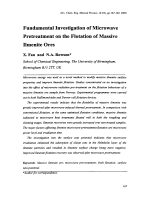 Fundamental Investigation of Microwave Pretreatment on the Flotation of Massive Ilmenite Ores.