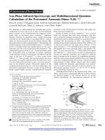 Gas-Phase Infrared Spectroscopy and Multidimensional Quantum Calculations of the Protonated Ammonia Dimer N2H7+.