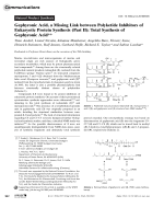 Gephyronic Acid  a Missing Link between Polyketide Inhibitors of Eukaryotic Protein Synthesis (Part II)  Total Synthesis of Gephyronic Acid.